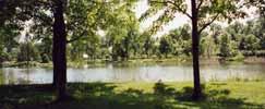 canada - québec - Montréal : le calme du jardin botanique au printemps
