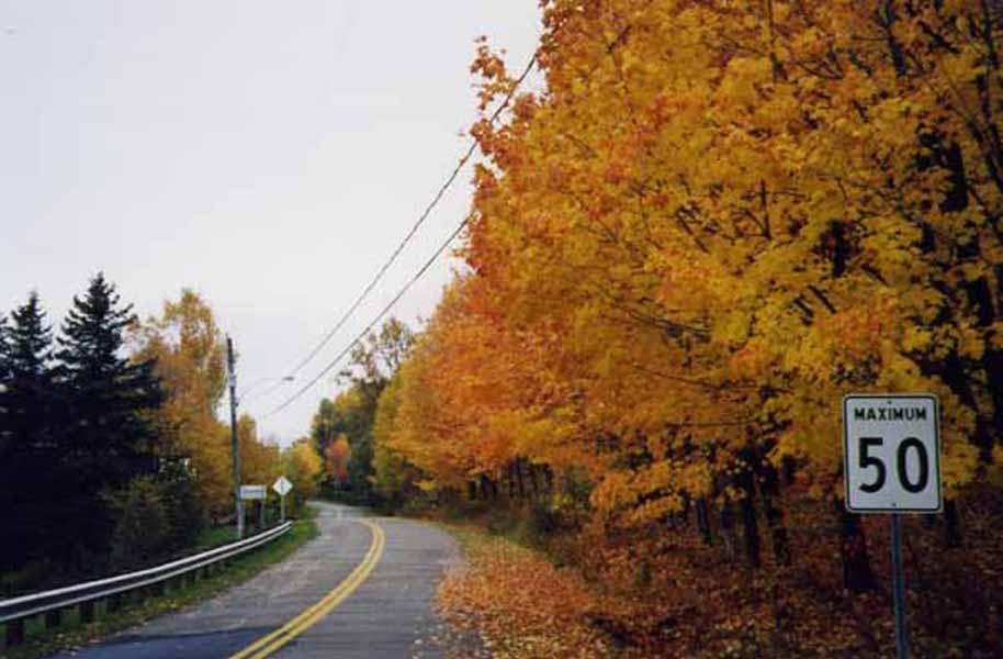 Route du Québec en automne