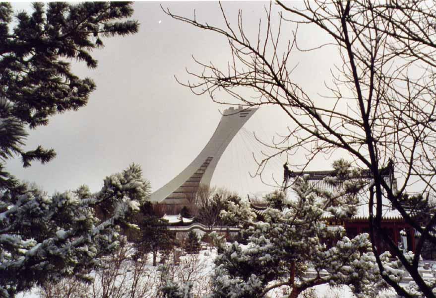 Le jardin botanique de Montréal en hiver