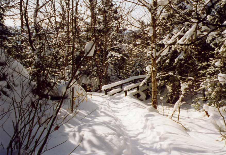 Le parc du Mont Tremblant en hiver