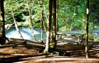 Parc de la rivière Gentilly